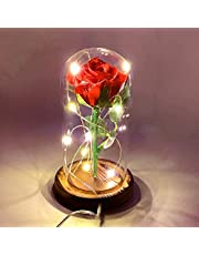 URBANSEASONS Beauty and The Beast Rose, Red Silk Rose That Lasts Forever in a Glass Dome with LED Lights,Gift for Mothers Day Valentine's Day Wedding Anniversary(ROSE02)