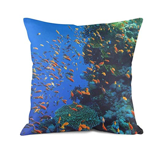(TYUING Throw Pillow Covers Printed Hawaii Coral Reef at Sunset Sofa Cushion Case Home Decor Design)