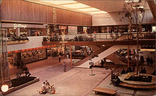 Garden Court - Southdale Shopping Center Minneapolis, Minnesota Original Vintage - Southdale Minnesota