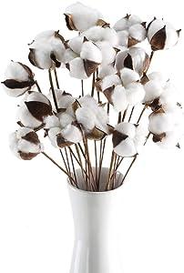GTIDEA 20Pcs 23 inches Natural Dried Cotton Stem Farmhouse Artificial Flower Filler Floral Arrangement DIY Home Party Decor