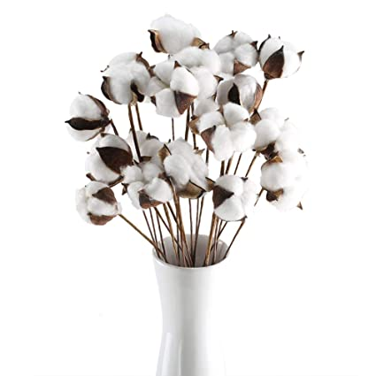 natural dried cotton faux flowers