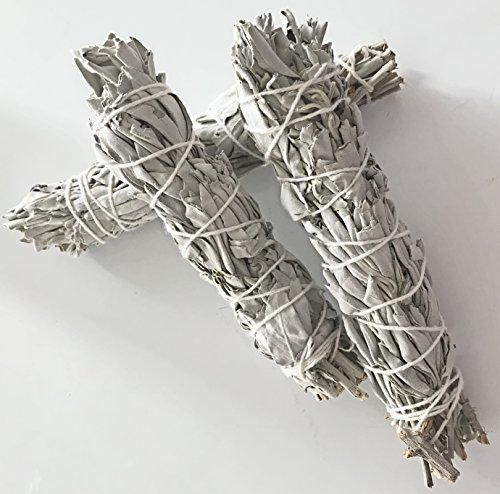 Indian Sage - 3 CALIFORNIA WHITE SAGE, 5 to 6 Inch Smudging Sticks,, Aromatic. Perfect for Home Blessing, an American Indian Tradition.