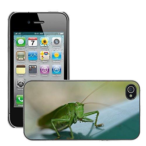 Bild Hart Handy Schwarz Schutz Case Cover Schale Etui // M00135610 Insekt Heuschrecke Natur Tier // Apple iPhone 4 4S 4G