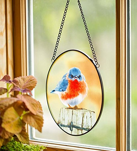 (Wind & Weather Mad Bluebird Suncatcher)