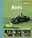 img - for Ants and Other Insects (Scholastic News Nonfiction Readers: Animal Survivors) book / textbook / text book