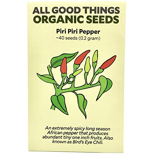 Piri Piri/African Birds Eye Chili Pepper (Capsicum frutescens) Seeds (~40): Certified Organic, Non-GMO, Heirloom, Open Pollinated Seeds from The United States