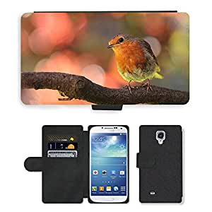 Super Stella Cell Phone Card Slot PU Leather Wallet Case // M00103700 Robin Bird On Branch In The Garden // Samsung Galaxy S4 S IV SIV i9500