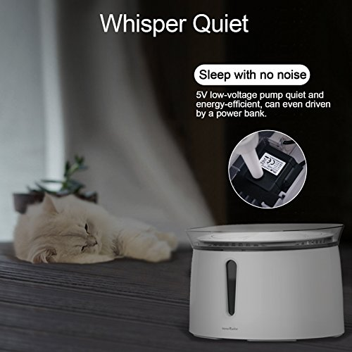 HomeRunPet Water Fountain Automatic Fresh Flow for Cats and Small to Medium Dogs, 2-Liter by HomeRunPet (Image #4)