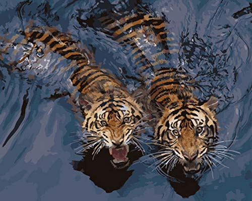 Tfcasz DIY Oil Painting by Numbers, Paint by Number Kits Tiger Swimming - Oil Painting Canvas Wallwork Paintings for Home Living Room New Year Valentine Gift Decor-Wooden Frame
