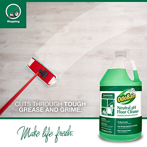 Amazon.com: OdoBan Professional Cleaning and Odor Control Solutions, 1 Gal Each Neutral pH Floor Cleaner and Biostain and Odor Remover: Industrial & ...