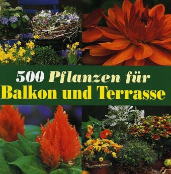 500 Pflanzen für Balkon und Terrasse Gebundenes Buch – 2. Mai 2005 Andrea Rausch Annette Timmermann Dörfler Verlag GmbH 3895552585