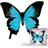 Paper House Productions Jigsaw Shaped Puzzle 17 by 23-Inch, Mountain Blue Butterfly (500 Pieces)