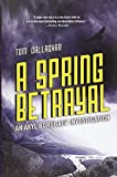 Image of A Spring Betrayal (An Akyl Borubaev novel)
