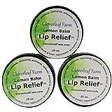 Cloverleaf Farm - Lemon Balm Lip Relief - 3 pack, 0.25 oz each