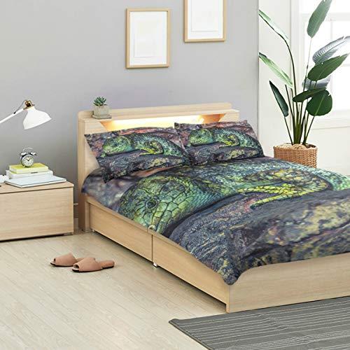 (MONTOJ Lizard Lie On Stone Bed Sheets Set Standard Bedspread Twin Size Cover Kids Duvet Cover Set 3-Piece Bedspread)