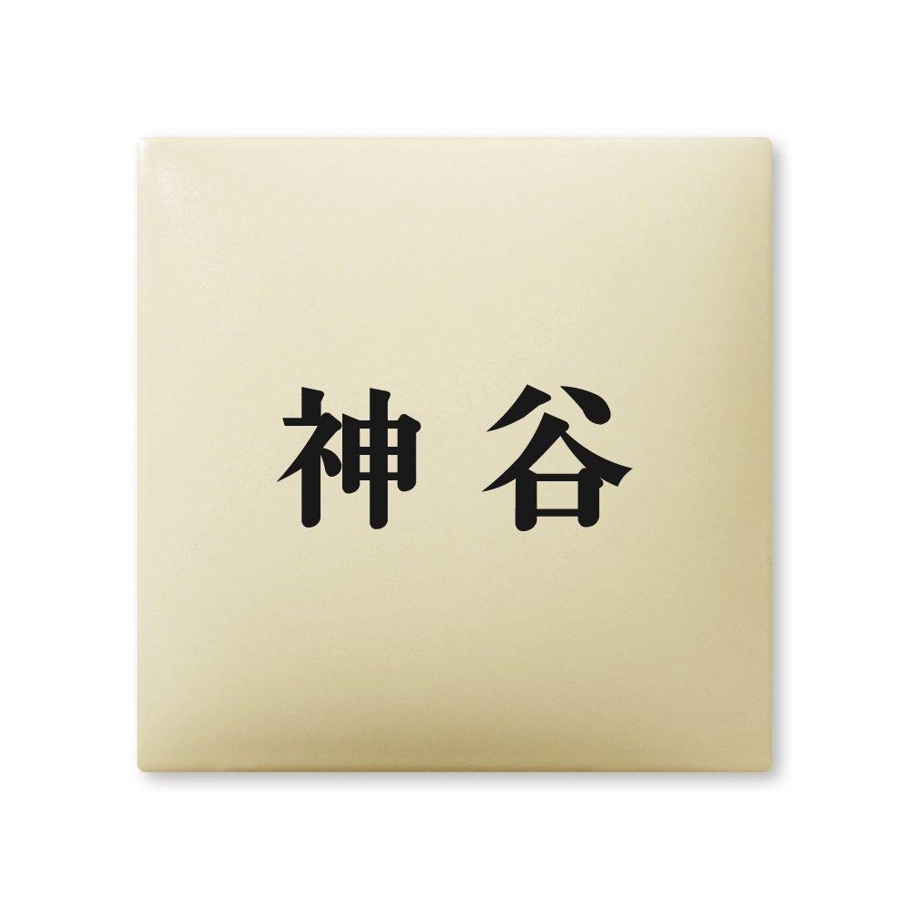 丸三タカギ 彫り込み済表札 【 神谷 】 完成品 アークタイル AR-1-1-2-神谷   B00RFBP4E4