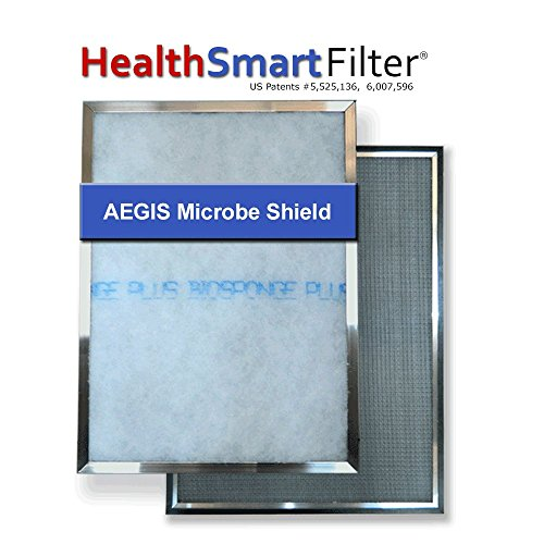 HealthSmart 21 1/2 x 24 AC filter / Furnace filter with (1) BioSponge Plus Refill