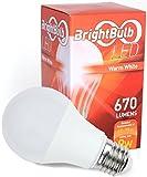 LED Light Bulb - 9W BrightBulb LED LightBulbs A19, High Efficiency, 10-Year ...