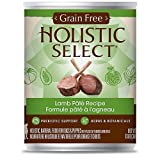 Holistic Select Grain Free Lamb Can Dog Food, Large