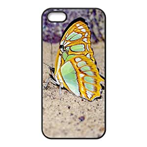SHJFDIYCase Design Brand NewButterfly Hot Sale Phone Case for Iphone 5,5S, DIY Cell Phone Case SHJF-522301
