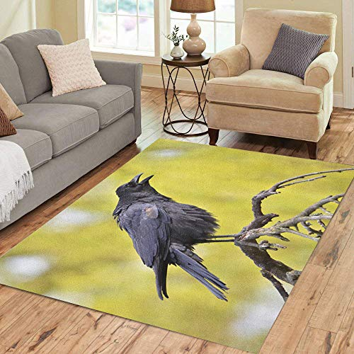 Semtomn Area Rug 2' X 3' Flying Black Crow Corvus Corone Common Closeup Food Intelligent Home Decor Collection Floor Rugs Carpet for Living Room Bedroom Dining -