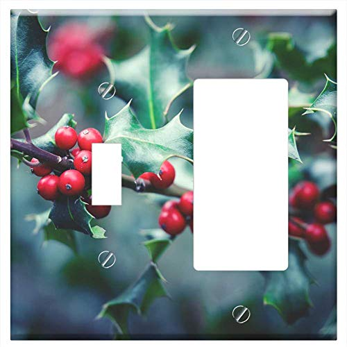 1-Toggle 1-Rocker/GFCI Combination Wall Plate Cover - Plant Berry Berry Red Bush Close Holly Christ (Holly Bush Berries)