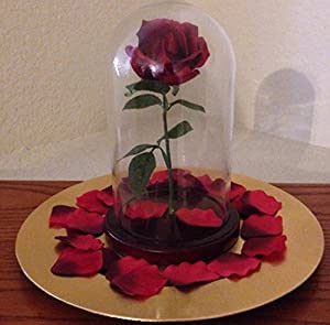 enchanted rose in glass dome inspired by beauty the beast movie everything else. Black Bedroom Furniture Sets. Home Design Ideas