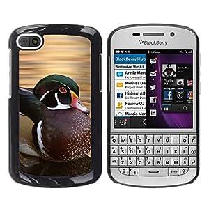 Colour negro para móvil duro de carcasa de // M99999023 rabudo // BlackBerry Q10