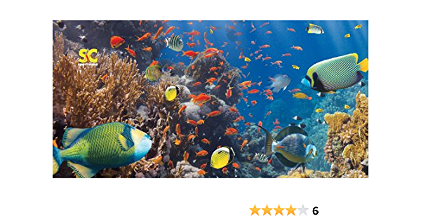 Coral Fish Sport N Care Marine Towel Beach Towel 32 x 60