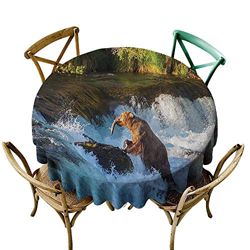 one1love Fashions Table Cloth Natural Waterfall Decor Image of Large Bear by A Rock in Alaska Waterfall Wildlife in Earth Art Print for Events Party Restaurant Dining Table Cover 70 -