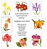 Flower Notecard Collection (8a) by Stephanie Scott from Original Botanical Watercolor Paintings (Set of 8)