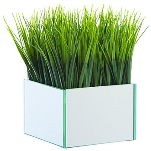8'' Hx6 W Grass Silk Plant w/Mirror Vase -Green (pack of 4) by SilksAreForever