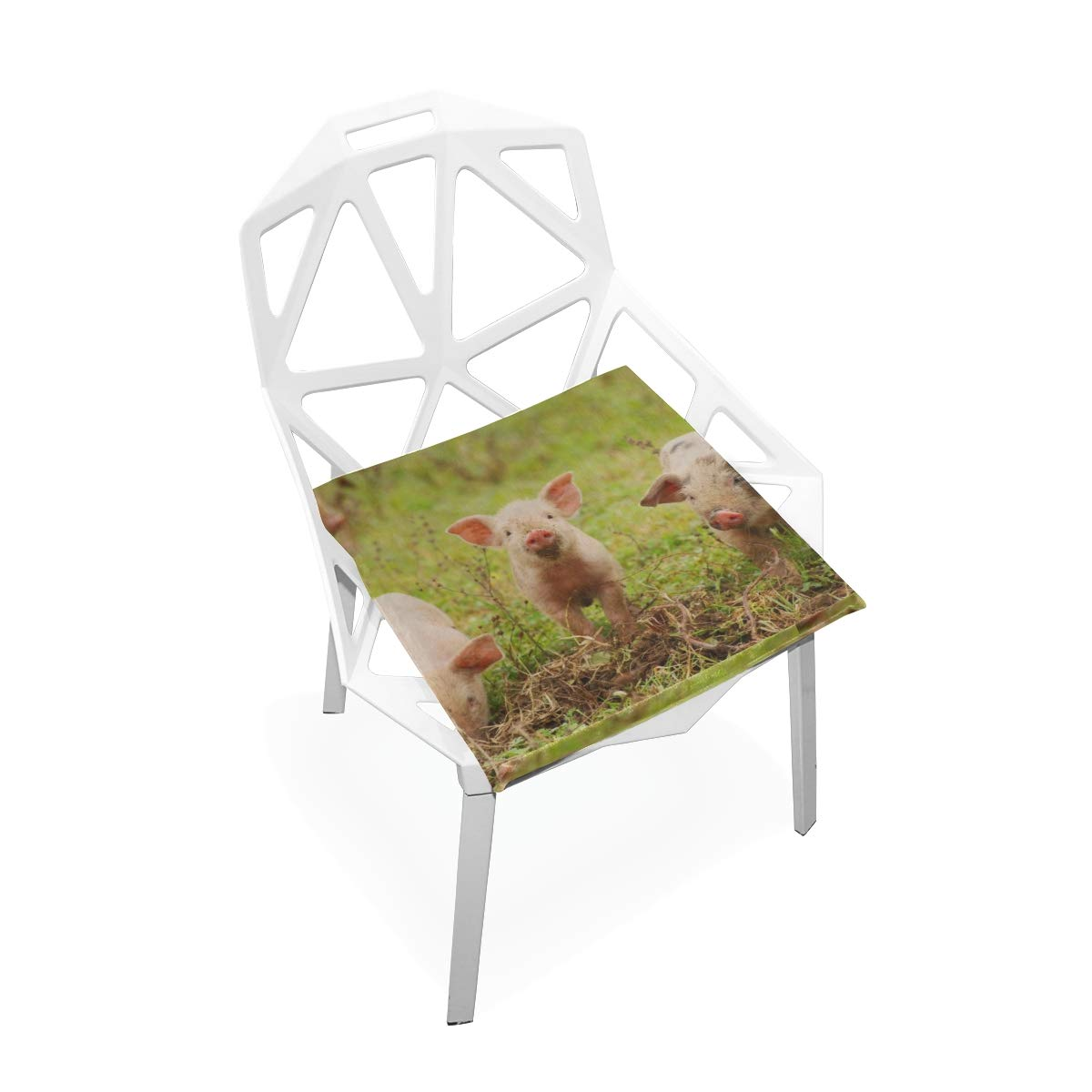 Lexav Farm Animal Cute Funny Young Pig Custom Soft Non-Slip Square Memory Foam Chair Pads Cushions Seat for Home Kitchen Dining Room Office Wheelchair Desk Wooden Furniture Indoor 16 X 16 Inch