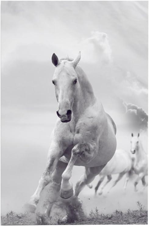 Homeofying - Cuadro de pared, diseño de caballo negro y blanco, sin marco, para dormitorio u oficina 40*60cm