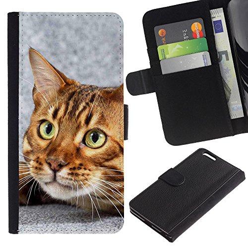 EuroCase - Apple Iphone 6 PLUS 5.5 - Bengal cat house kitten feline pet - Cuir PU Coverture Shell Armure Coque Coq Cas Etui Housse Case Cover
