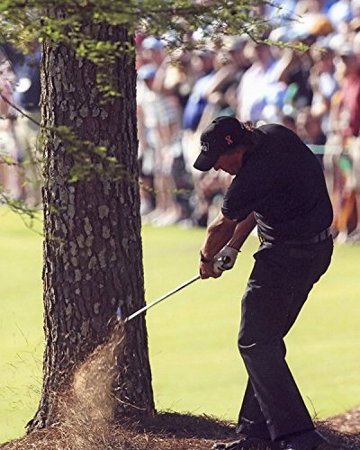 - Phil Mickelson 2010 Masters Augusta winning shot 13th hole 8 x 10 photo