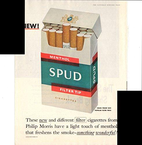 menthol-spud-filter-tip-cigarettes-philip-morris-1956-antique-advertisement