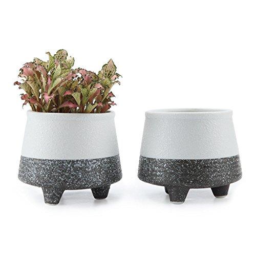 T4U 9CM Mini Korea Stil Schnee Serie No.1 Keramik Sukkulenten Töpfe Kaktus Pflanze Töpfe Blumentöpfe 2er Set