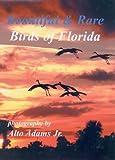 img - for Beautiful & Rare Birds of Florida book / textbook / text book