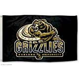 Oakland Golden Grizzlies OU University Large College Flag