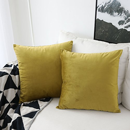 UGASA Pack of 2, Velvet Soft Soild Decorative Square Throw Pillow Covers Set Cushion Cases PillowCases for Livingroom/Couch, 18