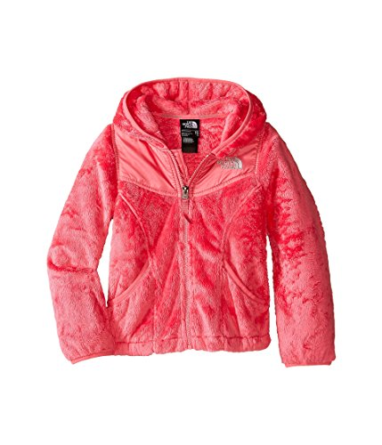(The North Face Kids Girls KidsLittle OSO Hoodie (Little Big Kids), Cha Pink, XL (18 )
