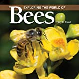 Exploring the World of Bees, Tracy C. Read, 1554079551
