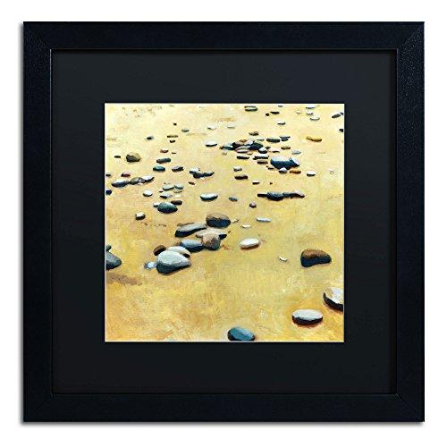 UPC 886511540620, Trademark Fine Art Pebbles on The Beach Black Matte Archival Paper Artwork by Michelle Calkins, 16 by 16-Inch, Black Frame