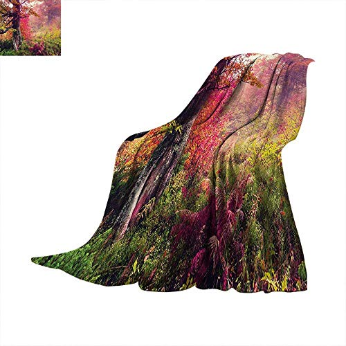 Forest Digital Printing Blanket Fairy Majestic Landscape with Autumn Trees in Forest Natural Garden in Ukraine Summer Quilt Comforter 62