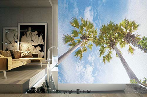(Decorative Privacy Window Film/Palm Tree at Phromthep Cape Phuket Thailand With Summer Sky View Holiday Picture/No-Glue Self Static Cling for Home Bedroom Bathroom Kitchen Office Decor Blue Green)