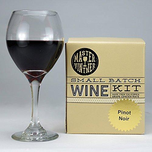the 1 gallon fruit winemaking kit - 8