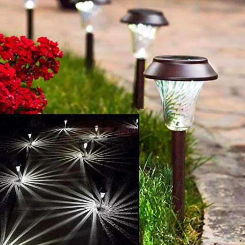 Enchanted Garden Landscape Lighting