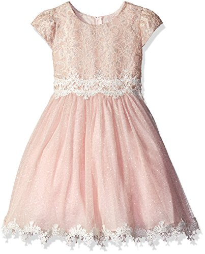 Rare Editions Little Girls' Lace and Glitter Mesh Dress, Blush, 6X