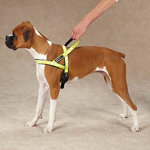 Logotipo de Casual Xtreme Canina Perro arnés: Amazon.es: Productos ...
